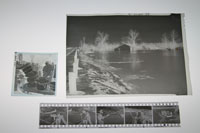 images of nitrate negatives