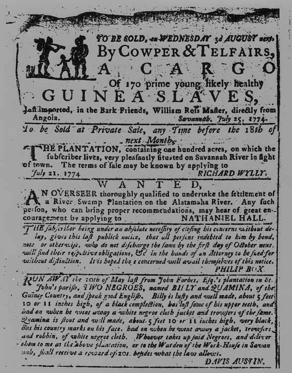 essay on biography of a runaway slave