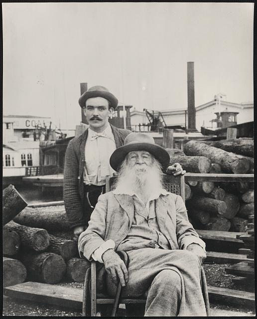 the life and works of walt whitman Works cited in the shmoop guide to walt whitman a bibliography of works cited.