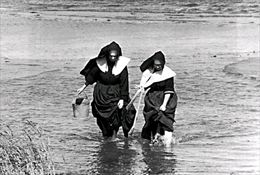 Nuns clamming on Long Island.