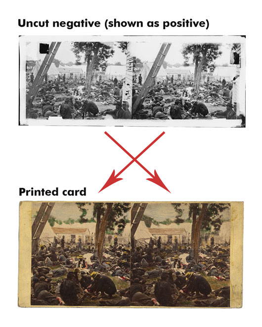 digram showing right and left views transposed in an uncut negative and a printed stereo card