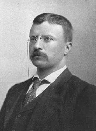 Image result for theodore roosevelt young man