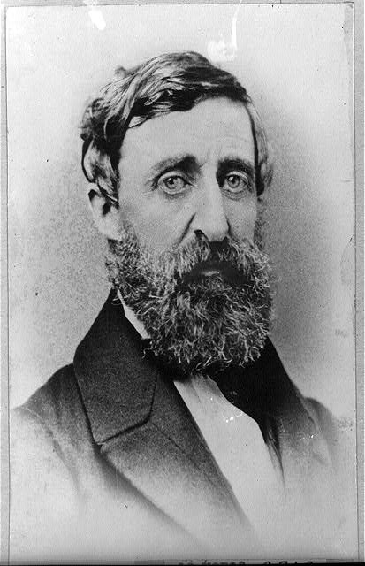 Emerson thoreau comparison essay