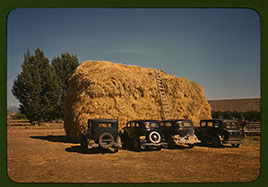Hay stack and automobile of peach pickers, Delta County, Colorado. Photo by Russell Lee, 1940...
