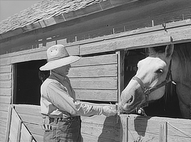 Andy Bahain, FSA (Farm Security Administration) borrower, feeds horses on his farm near Kersey, Colorado. Film negative photo by Arthur Rothstein, 1939