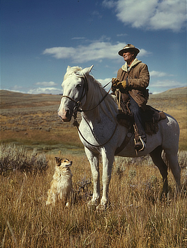 Shepherd with his horse and dog on Gravelly Range, Madison County, Montana. Color transparency photo by Russell Lee, 1942