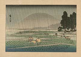 People working in rice paddies during a rain storm