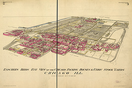 Rascher's birds eye view of the Chicago packing houses & union stock yards.